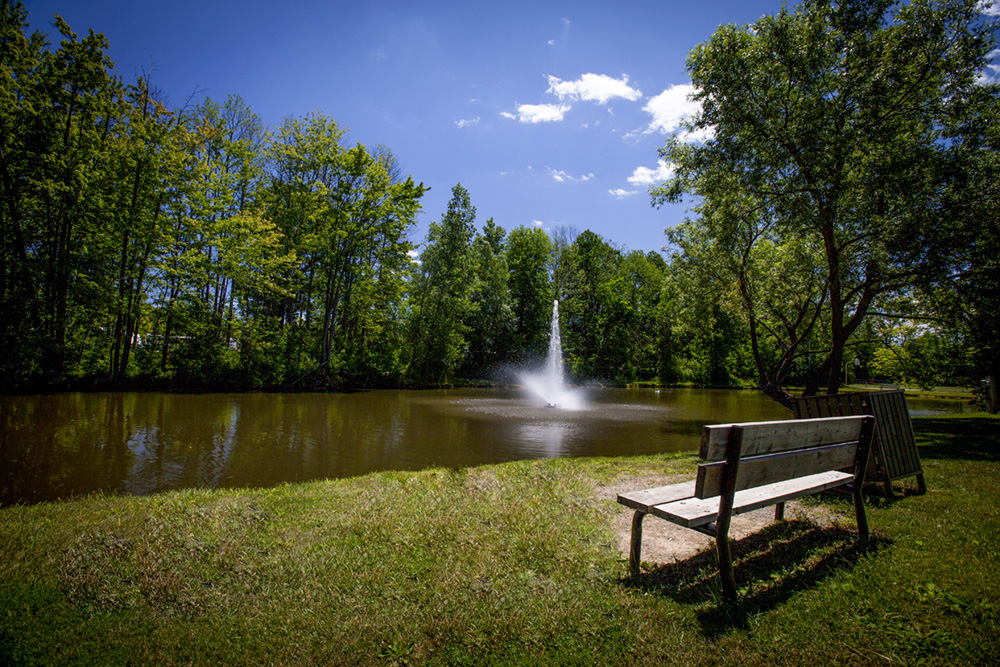 Pine Valley Park - PineValleyPark FOUNTAIN